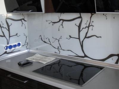 cтеклянная панель  из стекла