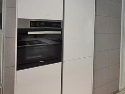 Минимально необходимая бытовая техника встроена в пенальную конструкцию кухни