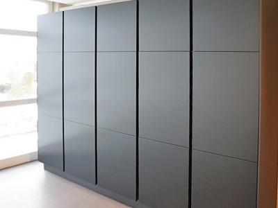 В пенальную конструкцию кухни встроены 2 холодильника, морозильник, и другая  бытовая техника